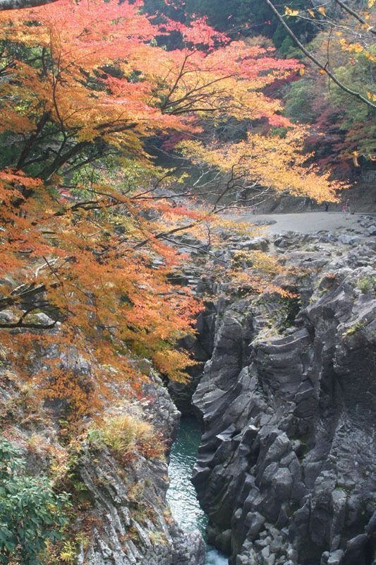 高千穂峡の紅葉