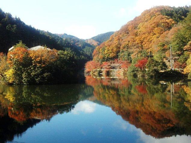鎌北湖の紅葉