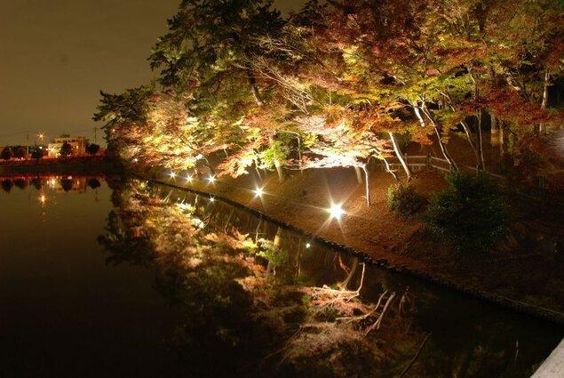 東公園の紅葉
