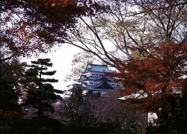 名城公園の紅葉