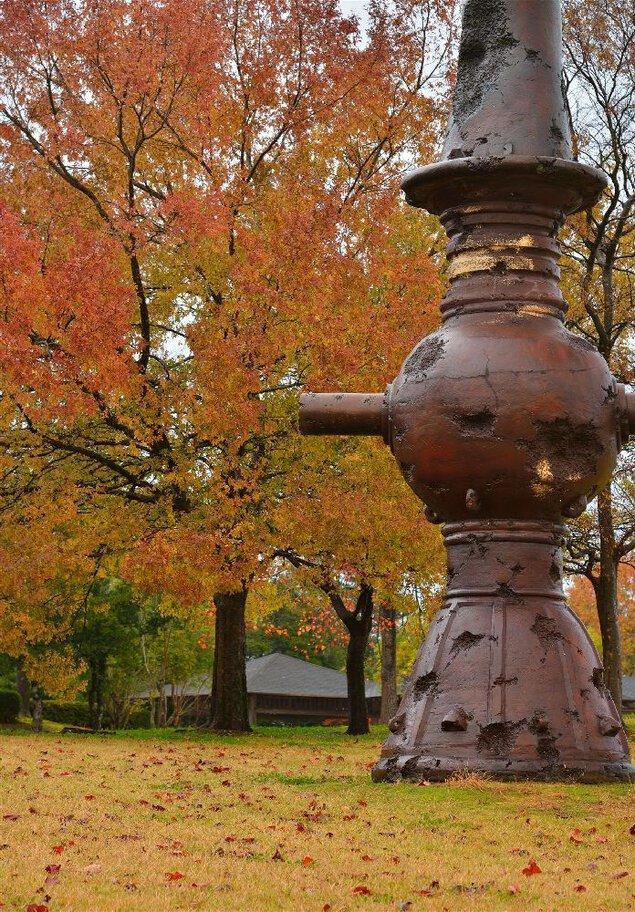 越前陶芸公園の紅葉