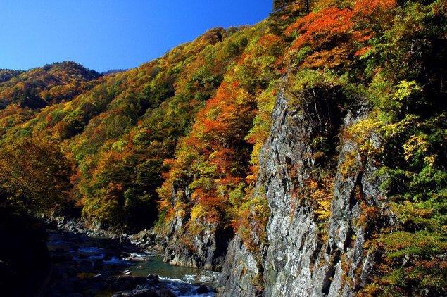 中津川渓谷(秋山郷)の紅葉