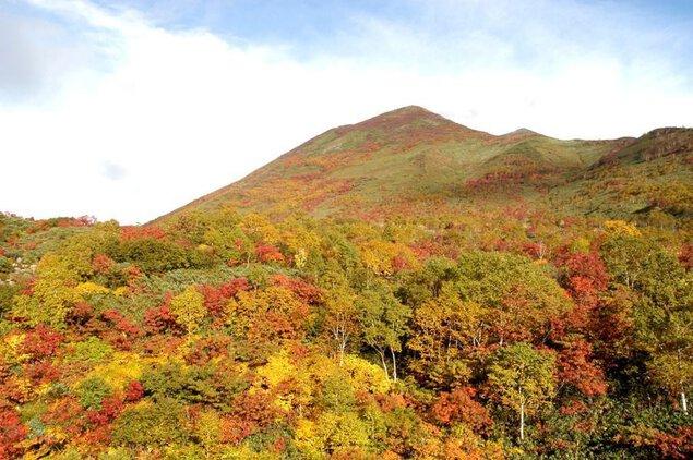 ニセコアンヌプリの紅葉