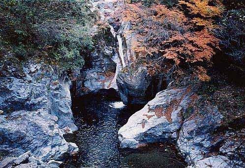 中津渓谷県立自然公園の紅葉