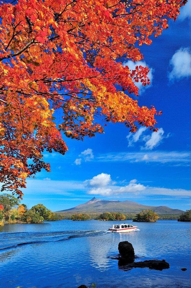 大沼公園(散策路、大沼湖畔)の紅葉