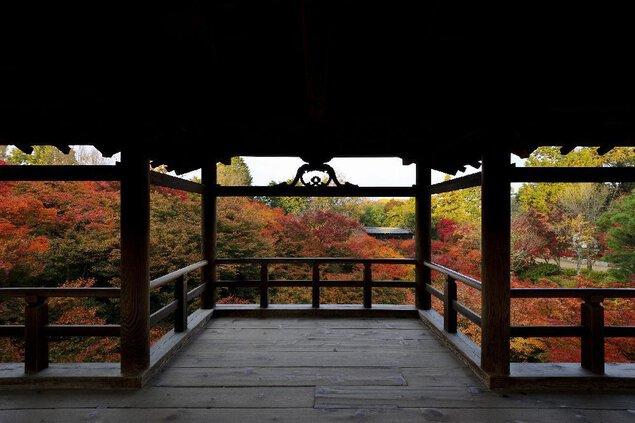 大本山 東福寺の紅葉