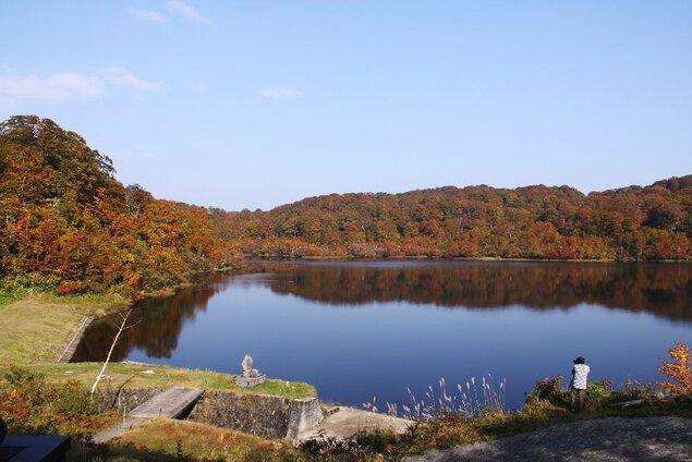 野々海高原の紅葉