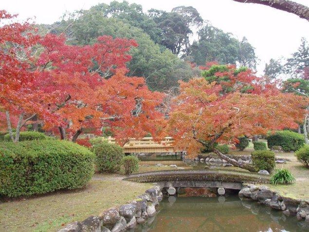 西渓公園の紅葉