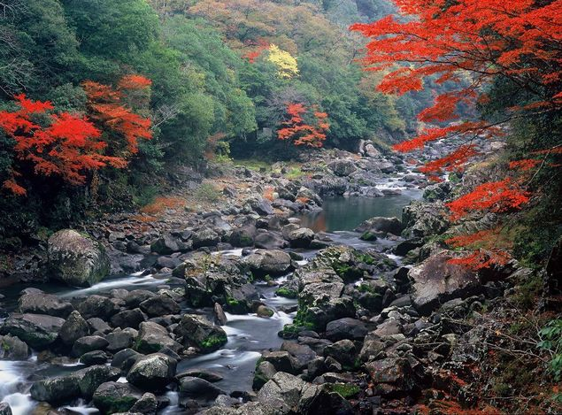 長門峡の紅葉