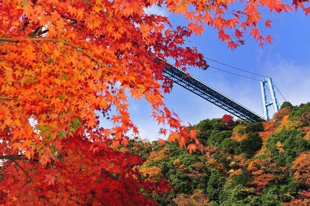 竜神峡・竜神大吊橋の紅葉