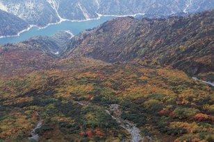 立山(黒部ダム:標高1470m付近)