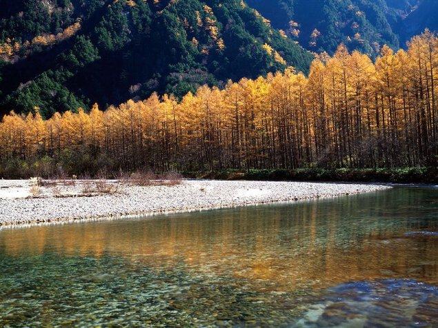 上高地(大正池、河童橋周辺)の紅葉