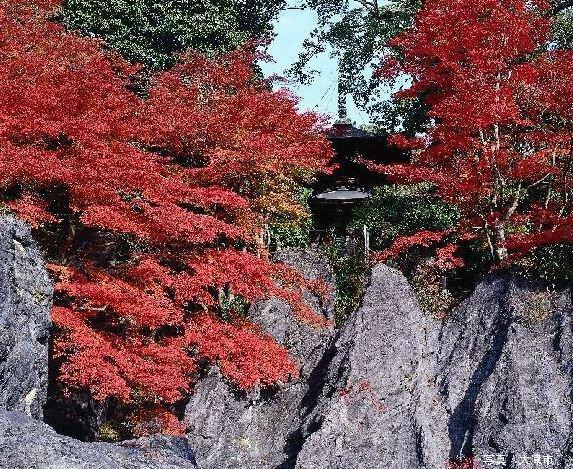 石山寺の紅葉