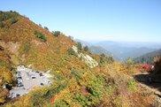 白山白川郷ホワイトロード(県境三方岩駐車場:標高1450m付近)