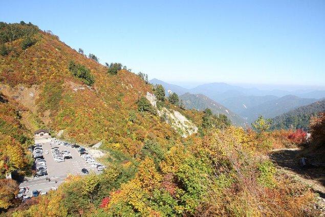 白山白川郷ホワイトロード(県境三方岩駐車場:標高1450m付近)の紅葉