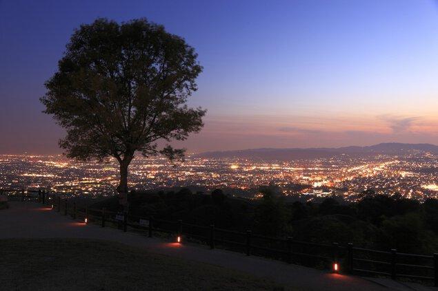 若草山 山頂展望台の夜景