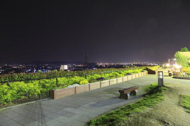 紀ノ川SA(下り線)の夜景