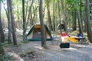 尾白の森キャンプ場