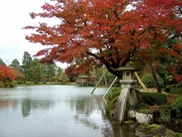 特別名勝兼六園の紅葉