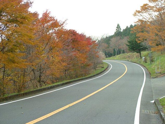 富士山スカイライン二合目の紅葉