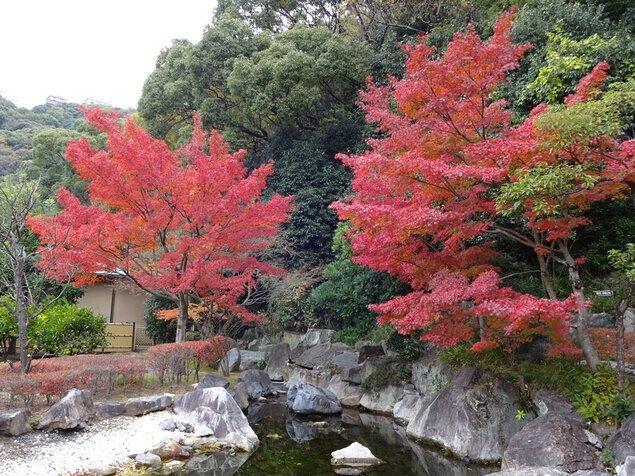 松山城二之丸史跡庭園の紅葉