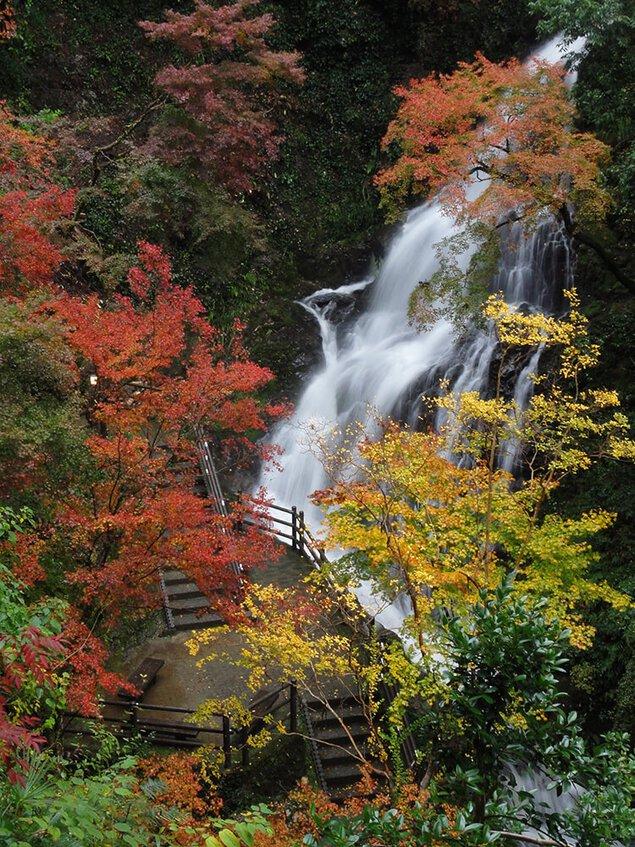 白滝公園の紅葉