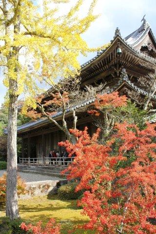 東光寺の紅葉