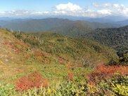 尾瀬国立公園 田代山