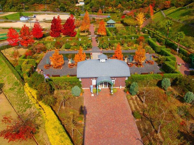 みやま公園の紅葉