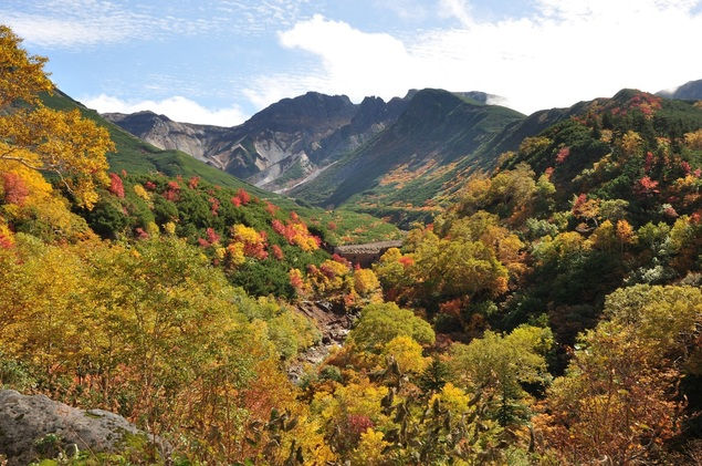 十勝岳温泉郷の紅葉