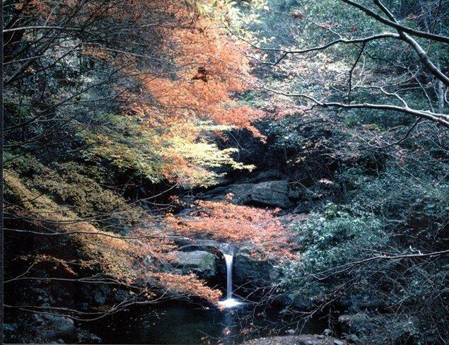 犬鳴山温泉の紅葉