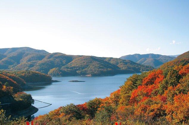 羽鳥湖高原の紅葉