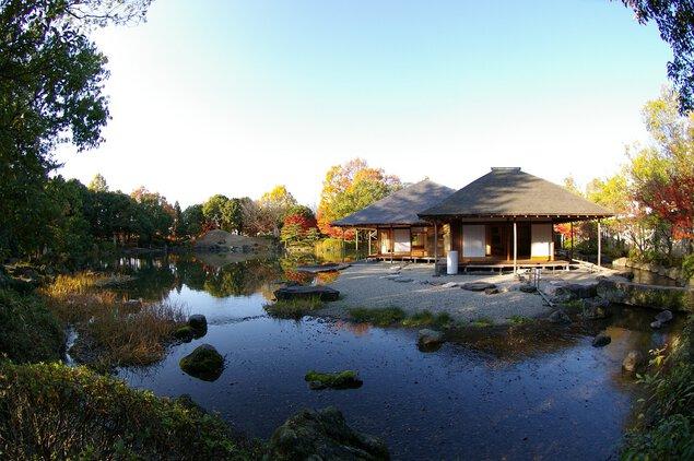 国名勝 養浩館庭園の紅葉