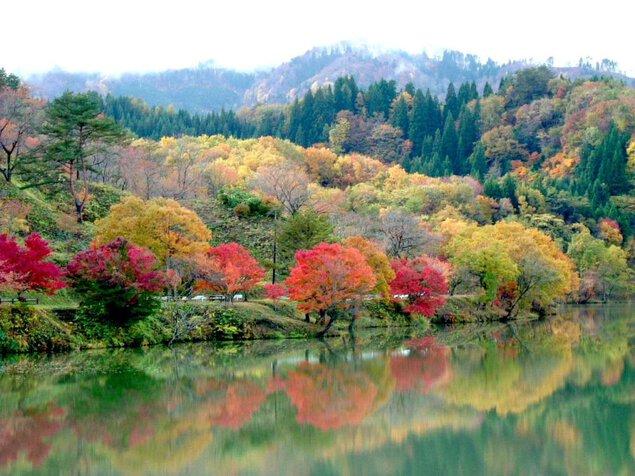 八塩いこいの森の紅葉