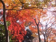 瑞宝寺公園