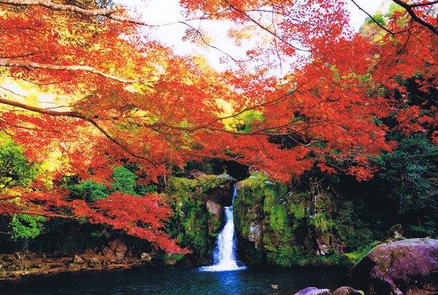 観音滝リゾートの紅葉