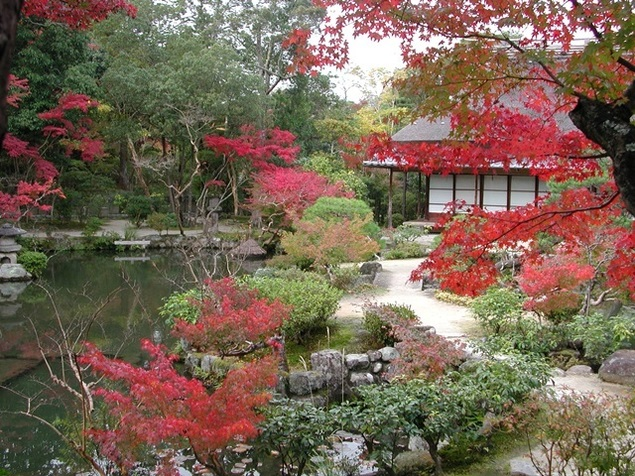 名勝依水園の紅葉