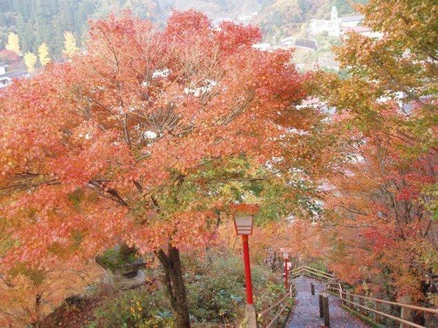 清正公園の紅葉