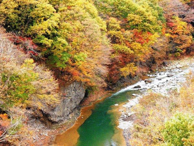 白砂渓谷ラインの紅葉