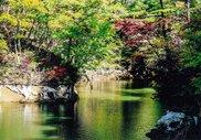 谷山自然公園