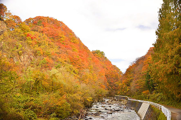 岨谷峡の紅葉