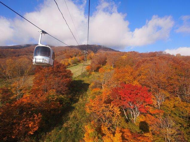 妙高高原スカイケーブルの紅葉