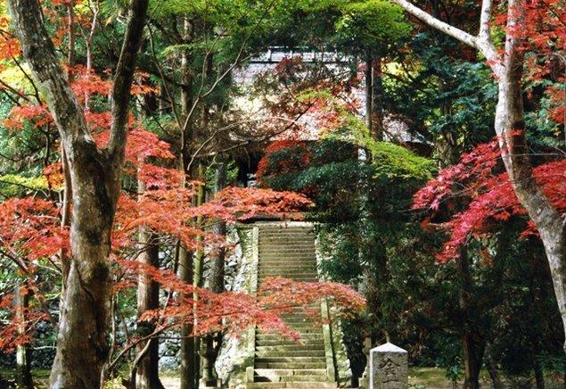 石龕寺の紅葉
