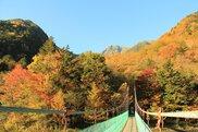 南アルプス白鳳渓谷