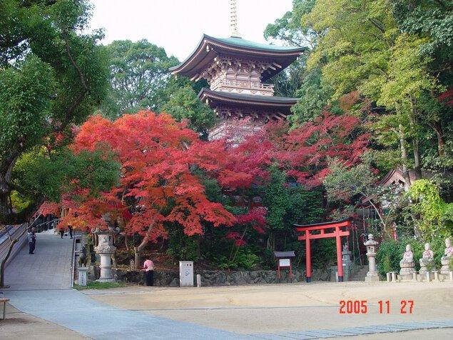 大本山 須磨寺の紅葉