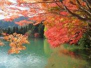 南伊奈ヶ湖周辺