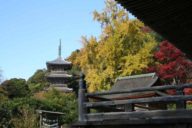 清水公園(島根県)の紅葉