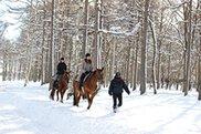ノーザンホースパーク 冬期入園無料