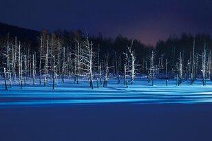 青い池ライトアップ