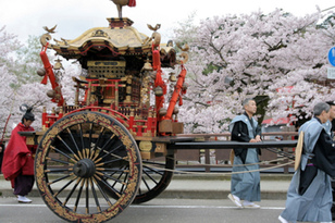 大聖寺 桜まつり